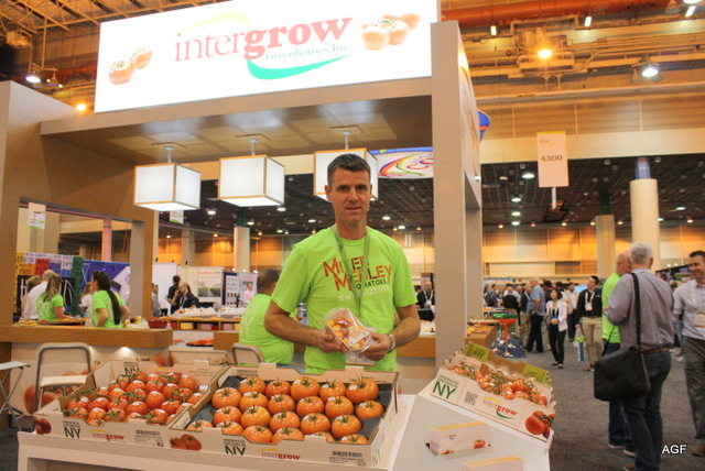 US (NY): Good expectations for lit season at Intergrow